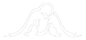 nowcs-logo-white